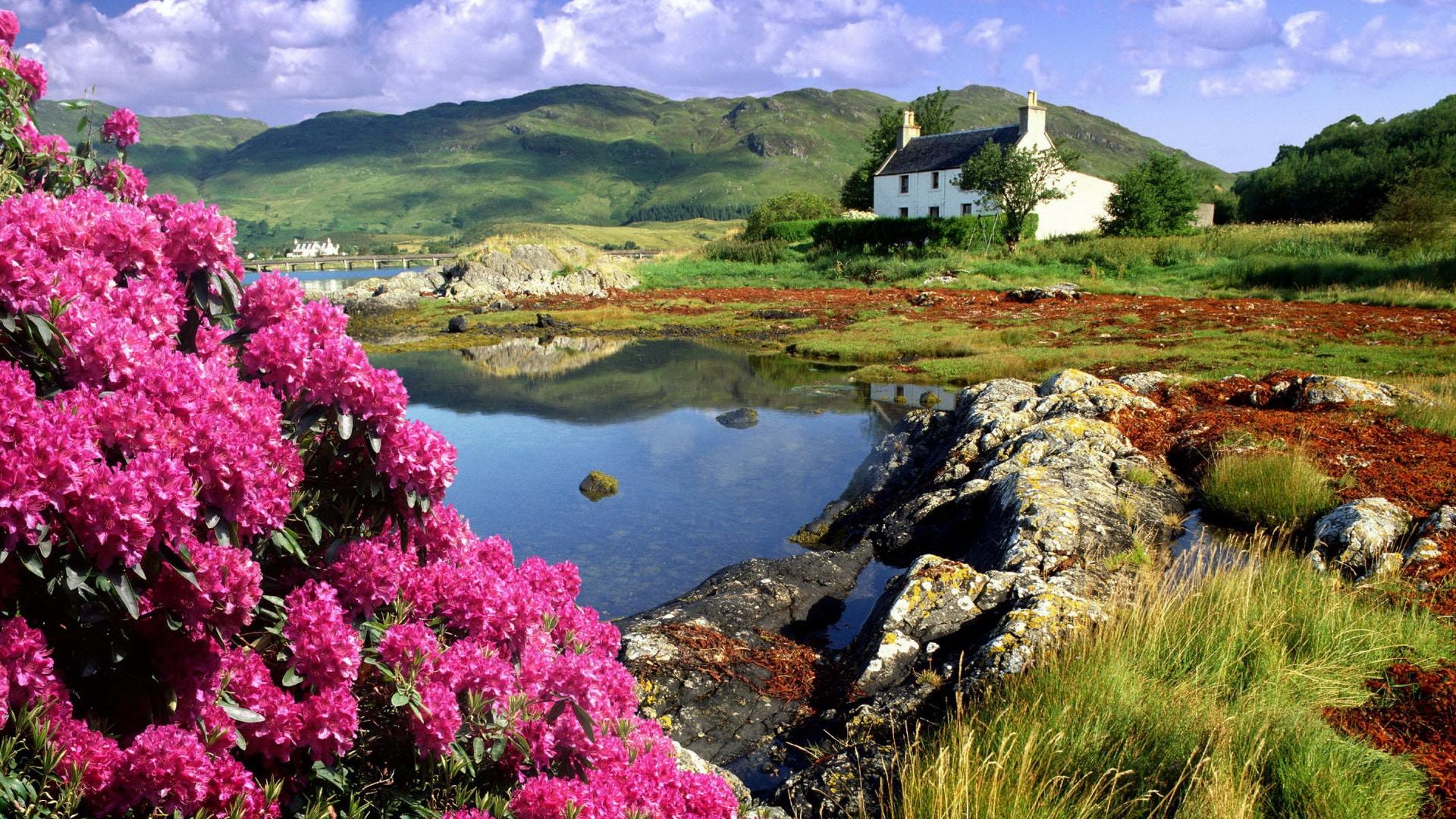 """Résultat de recherche d'images pour """"paysage d'irlande du sud"""""""
