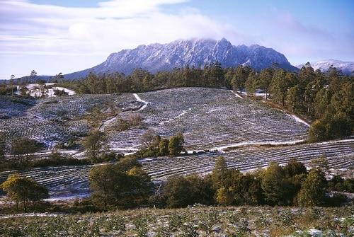 Winter in australia