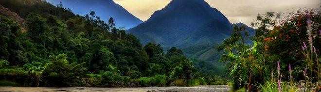 Bornéo – La 4ème plus grande île du monde à explorer pendant ton stage !