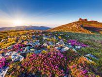 Les 7 nouvelles merveilles du monde à découvrir pendant ton stage à l'étranger !