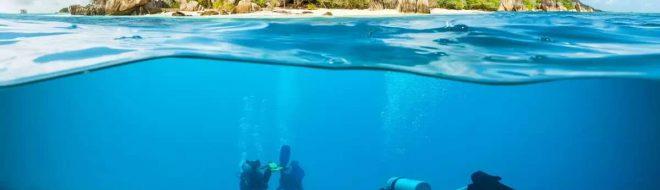 Les meilleurs sites de plongée dans le monde !