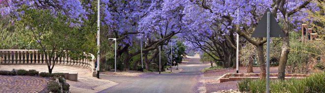Destination Afrique du Sud pendant ton stage à l'étranger – Partie III – Pretoria