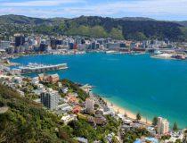 Wellington, une capitale pas comme les autres à visiter pendant ton stage à l'étranger