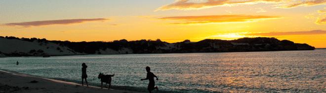 Stage Australie ou Nouvelle-Zélande : votre expérience pro au bout du monde
