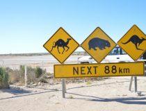 Australie : les endroits incontournables du pays