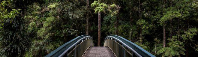 Stage en Nouvelle-Zélande, les sites classés au patrimoine de l'UNESCO