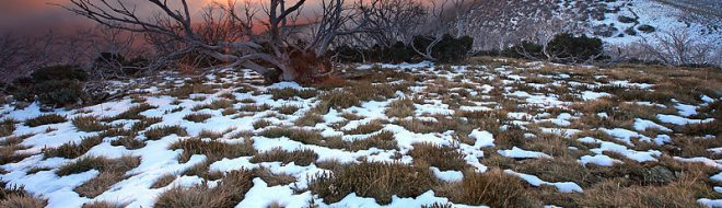 Stage en Australie, que faire pendant la saison hivernale ?